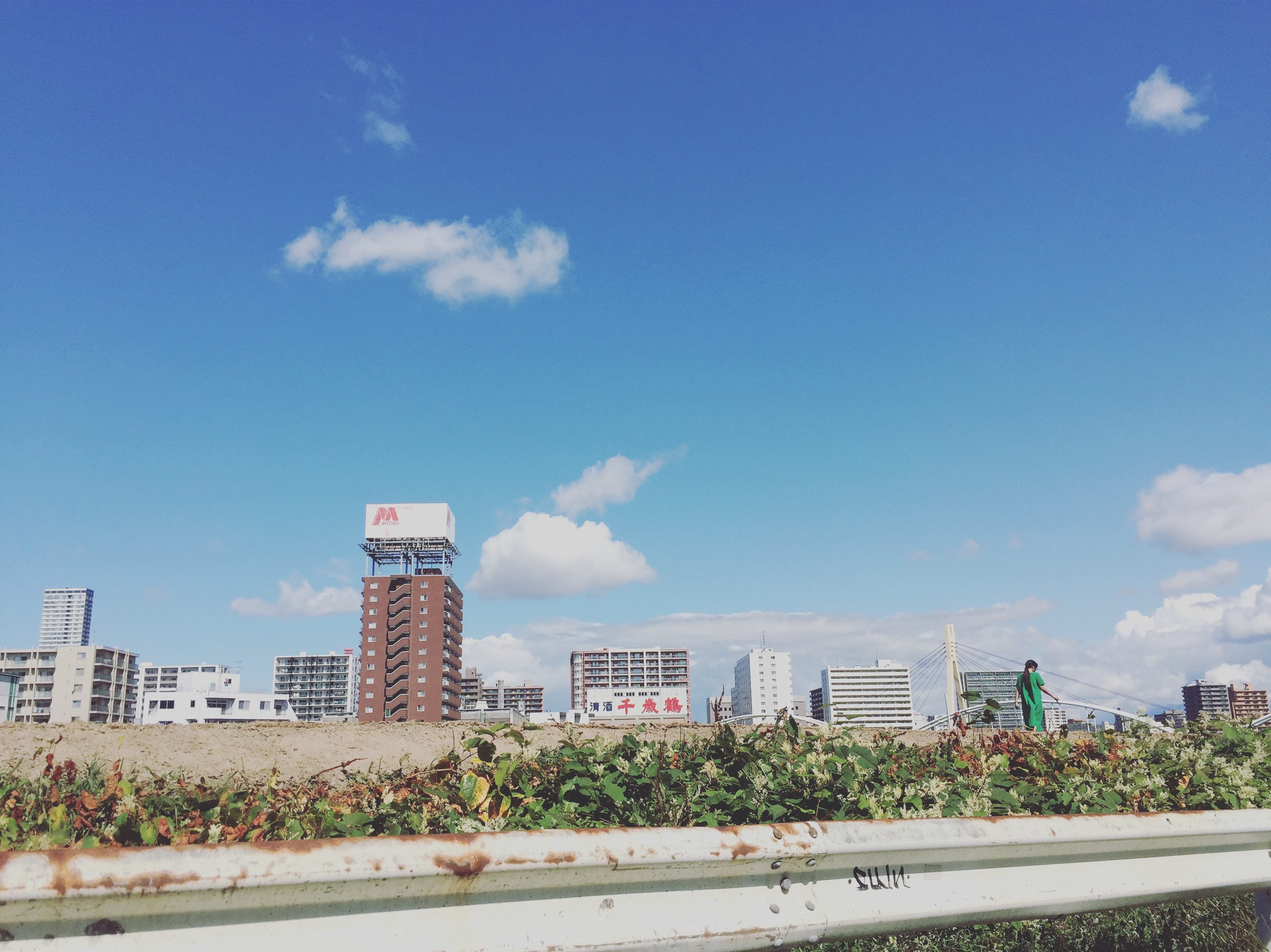 札幌ゲストハウスyuyu近くの豊平川